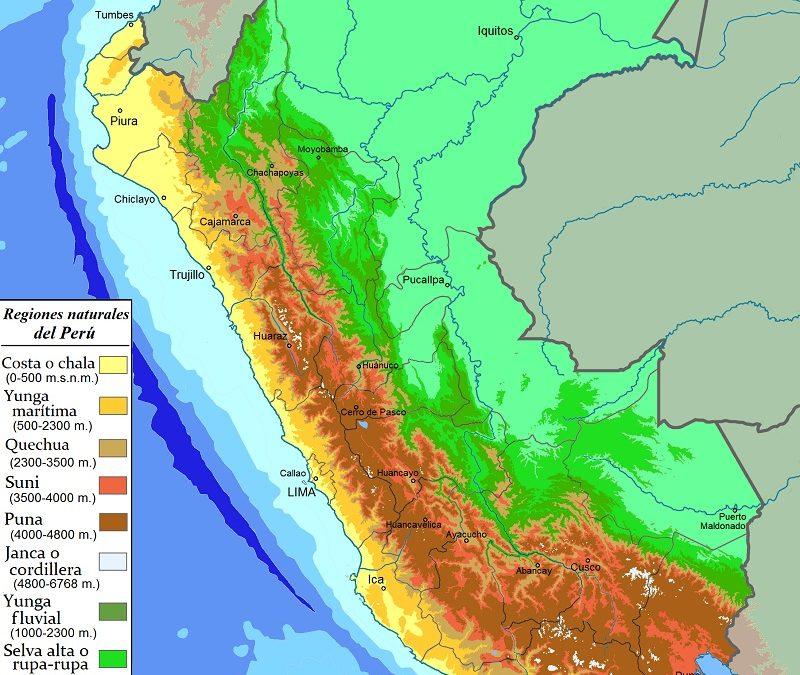 Ecological floors of Peru
